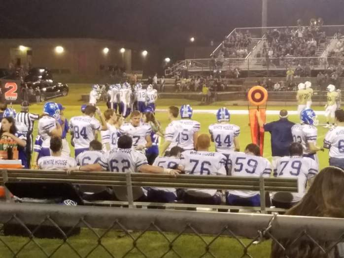 sideline sycamore